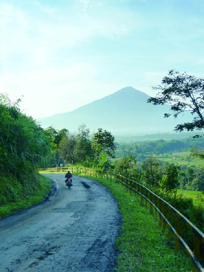 In the hills above the Garut Valley, with a view to Mount Cikuray.