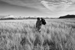 On the hunt in the grasslands of Bayan-Ölgii.