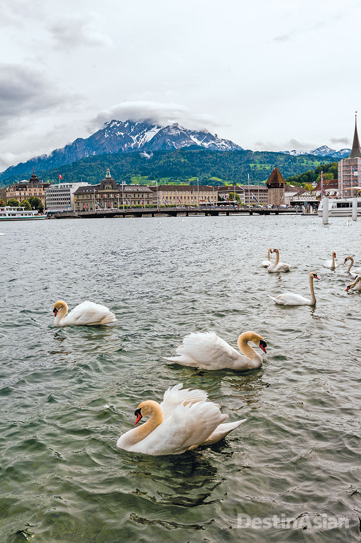 A view of the western end of Lake Lucerne from the quay in front of Hotel Schweizerhof, with Mount Pilatus in the background.