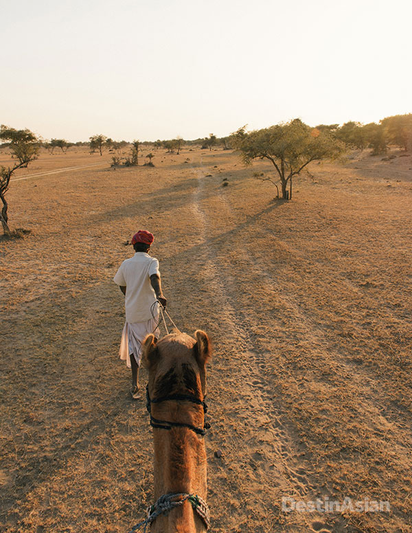 A guide leads the way on a camel trek through the desert surrounding The Serai.