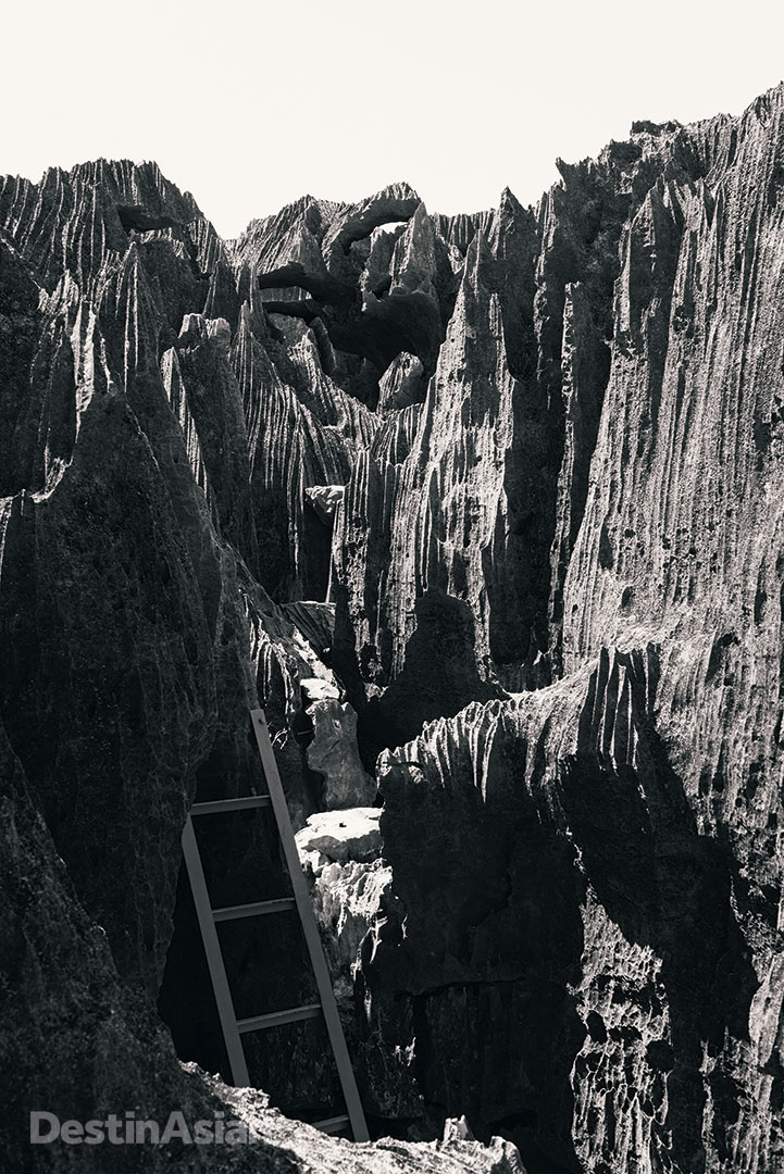 A ladder guides the way up razor-sharp limestone rocks in the karstic badlands of Tsingy de Bemaraha National Park.