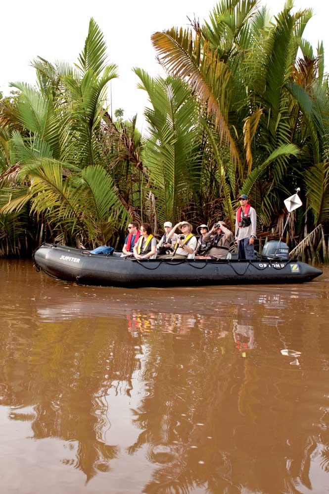 Wildlife spotting on the Sekonyer River.
