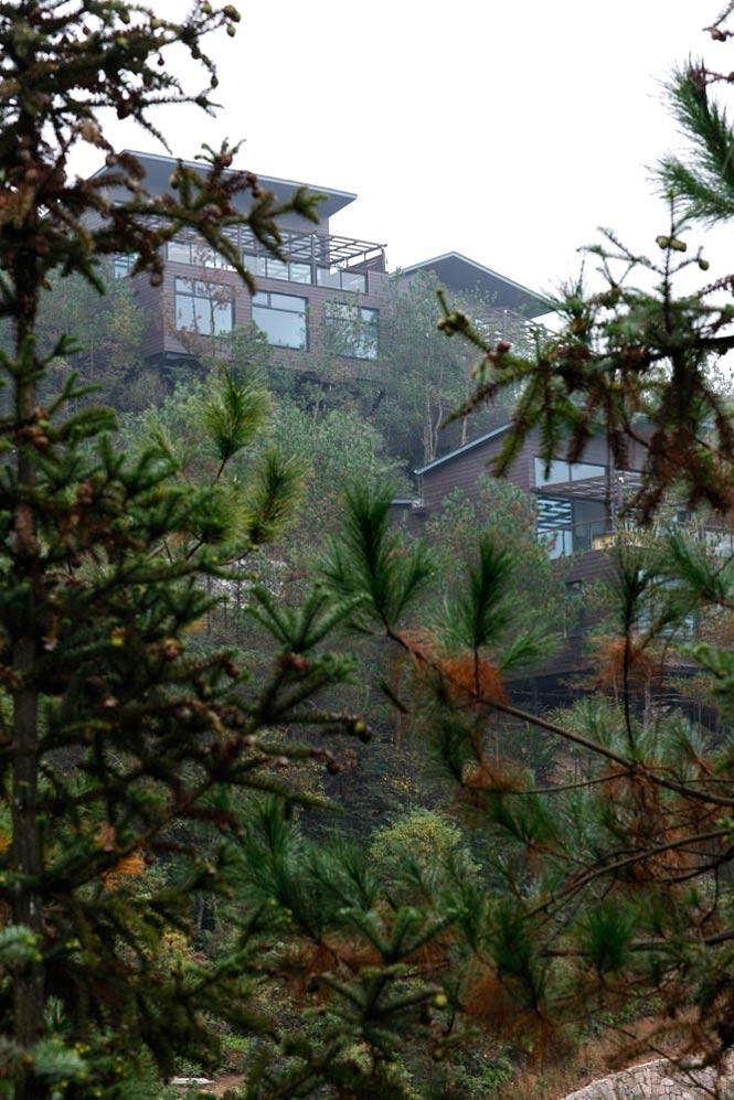 Treetop Villas on the ridge