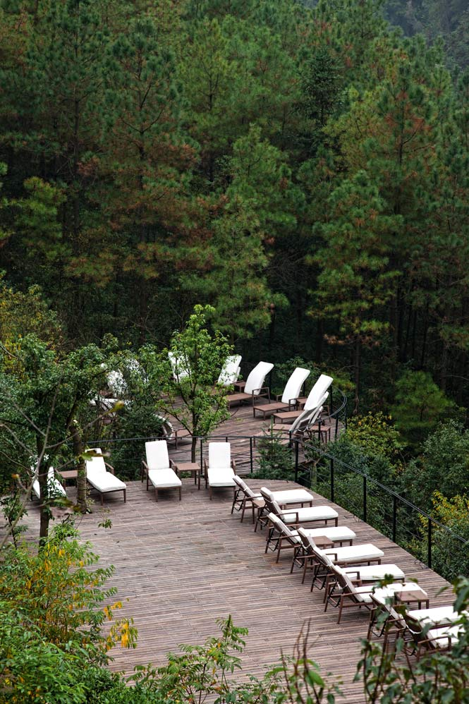 A deck area set between lush forest and a pair of infinity pools