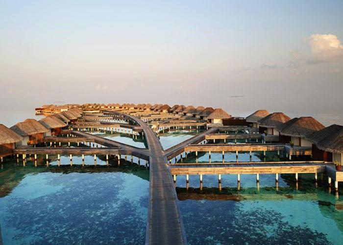 The W Maldives's 15 Below, the only underwater nightclub in the islands, has 95 varieties of vodka.