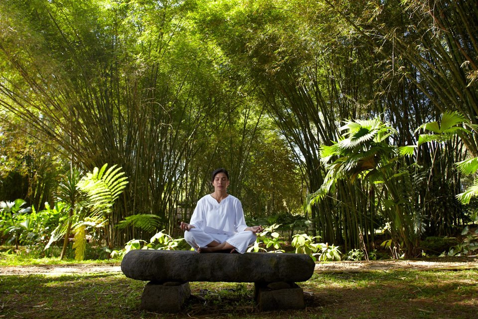 David Arenson will lead guests on holistic retreats.