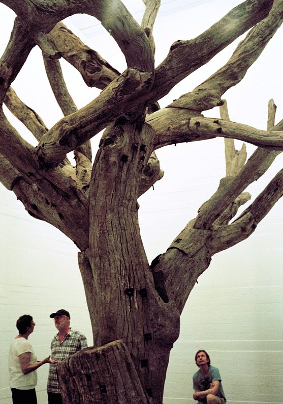 Ai Weiwei's Tree, one of the installations at the Boros Collection.