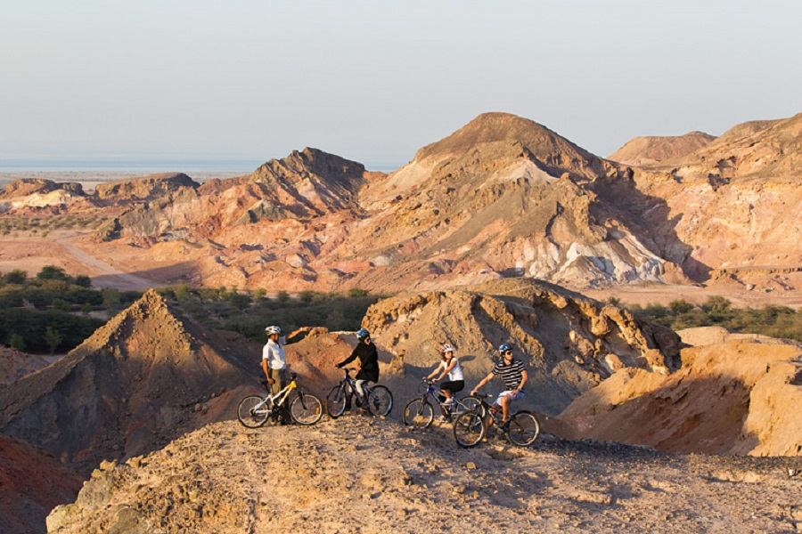 Mountain biking through the hills affords views of scenery and wildlife alike.