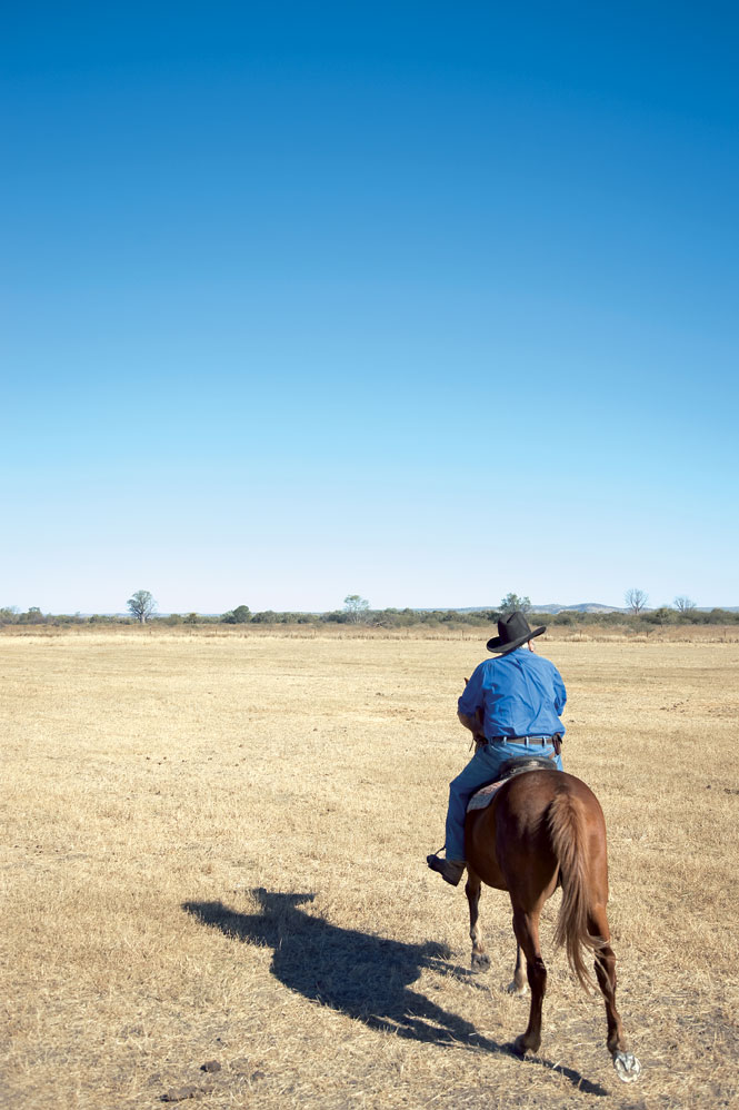 A Bullo drover heads out across the ranch.