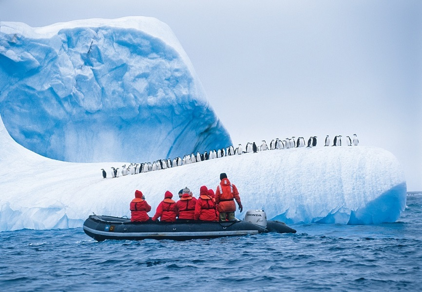 Guests exploring a penguin colony with National Geographic Expeditions.