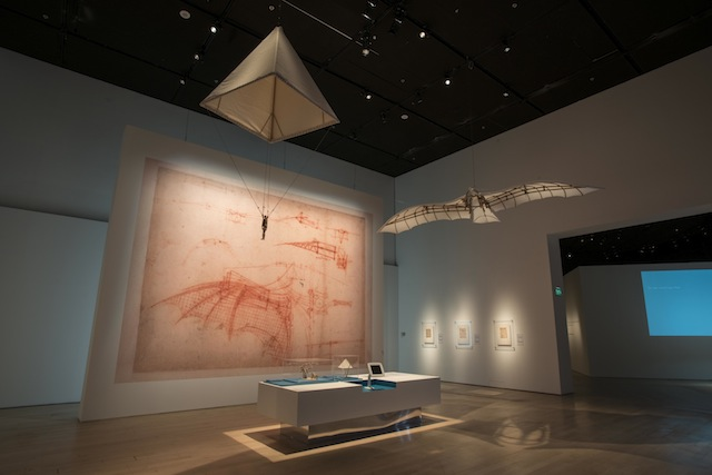 The Natural Science gallery reflects da Vinci's deep respect and fascination with nature.