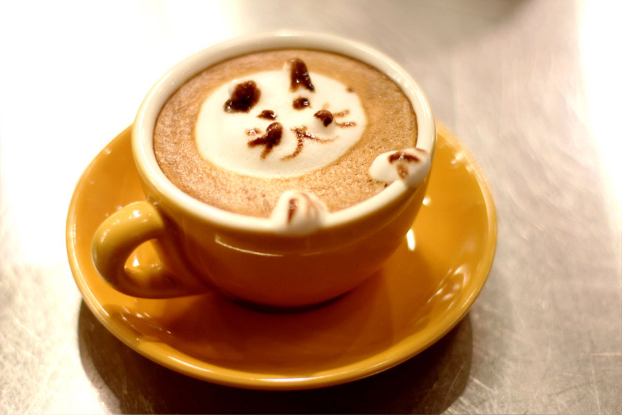 Nutmeg's 3D Lattes are crafted by expert baristas.