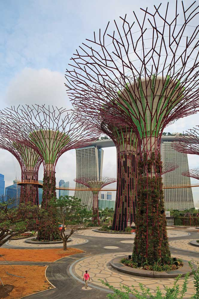 """Some of the sites """"super-trees,"""" which will eventually be cloaked in thick vegetation."""