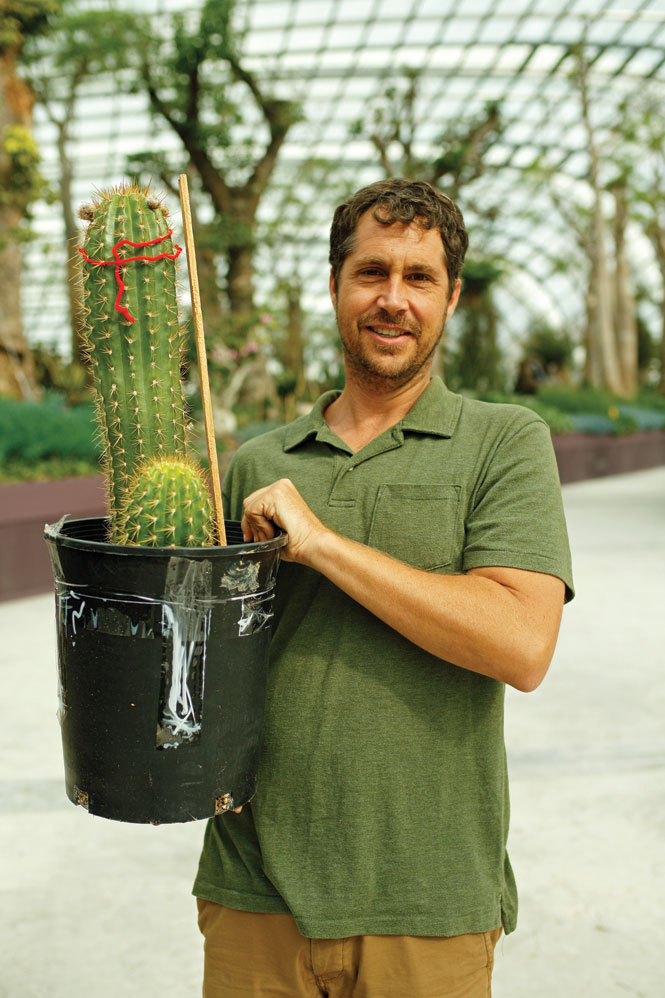 Chad Davis, the Gardens' head of conservatory operations.