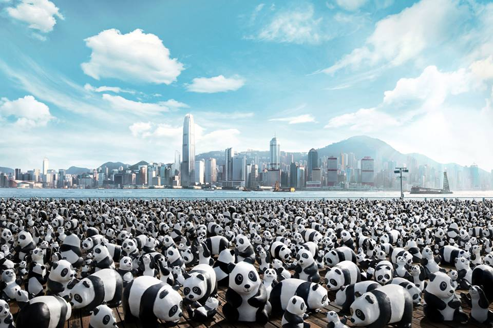 Pandas will descend upon Hong Kong to highlight conservation and mark the opening PMQ mall.