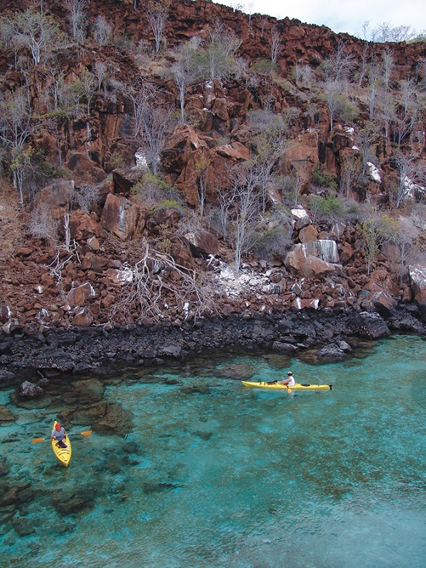 Guests on a kayaking excursion.