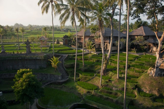 The hotel's 58 villas are spread amid rice terraces.