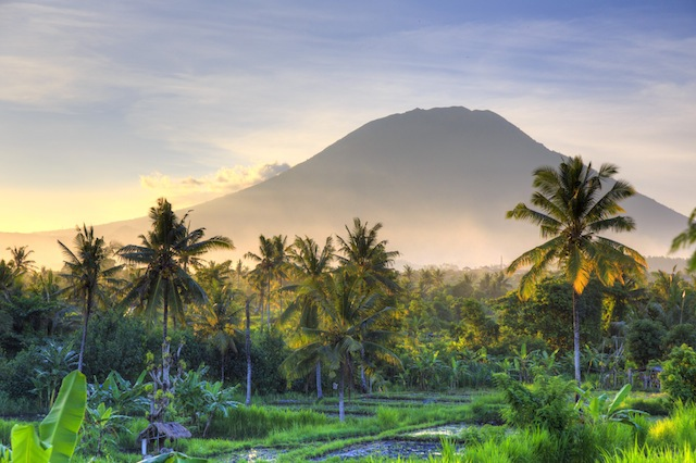 Bali's busy shores welcomed more than 3.7 million foreign tourists last year.