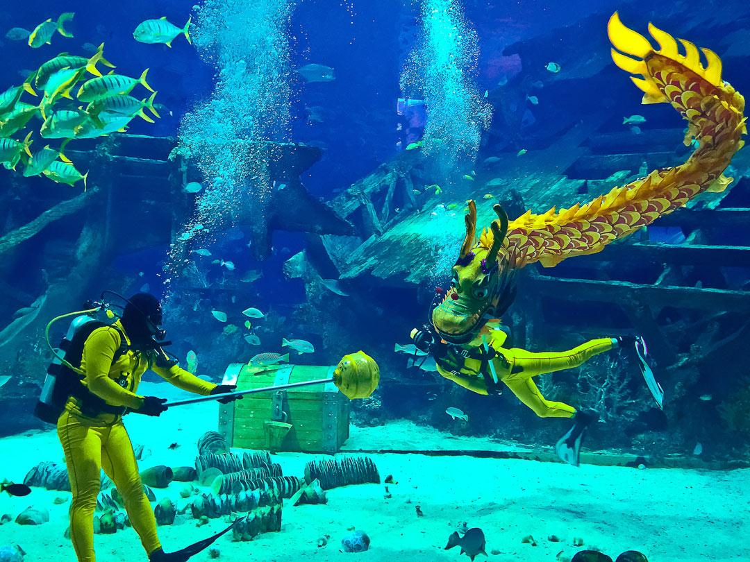 The Underwater Dragon Dance.