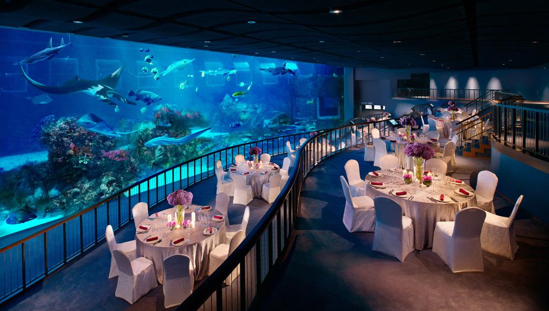 The Lunar New Year Reunion Buffet Dinner at S.E.A. Aquarium's Ocean Gallery.