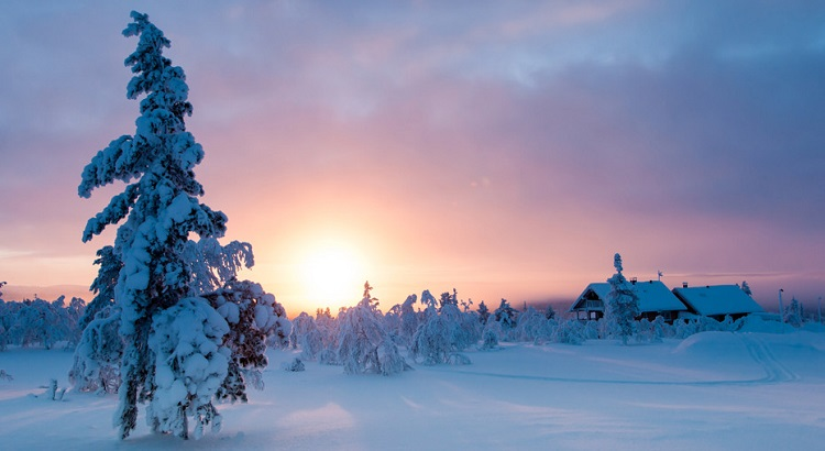Winters at Saariselka are perfect for sledding, skiing, and snowmobile safaris.