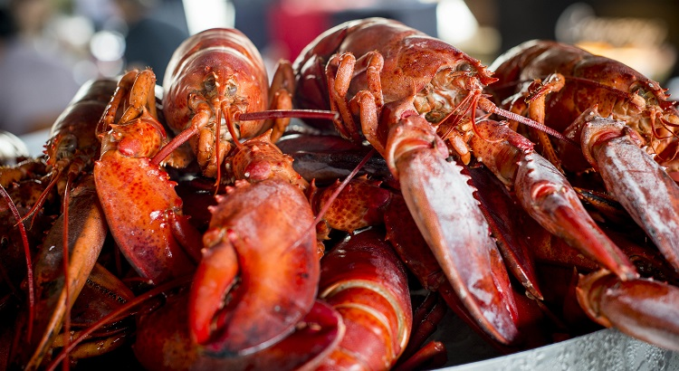 Enjoy delicious fresh seafood at The Watercourt's new outdoor deck overlooking the lagoon.