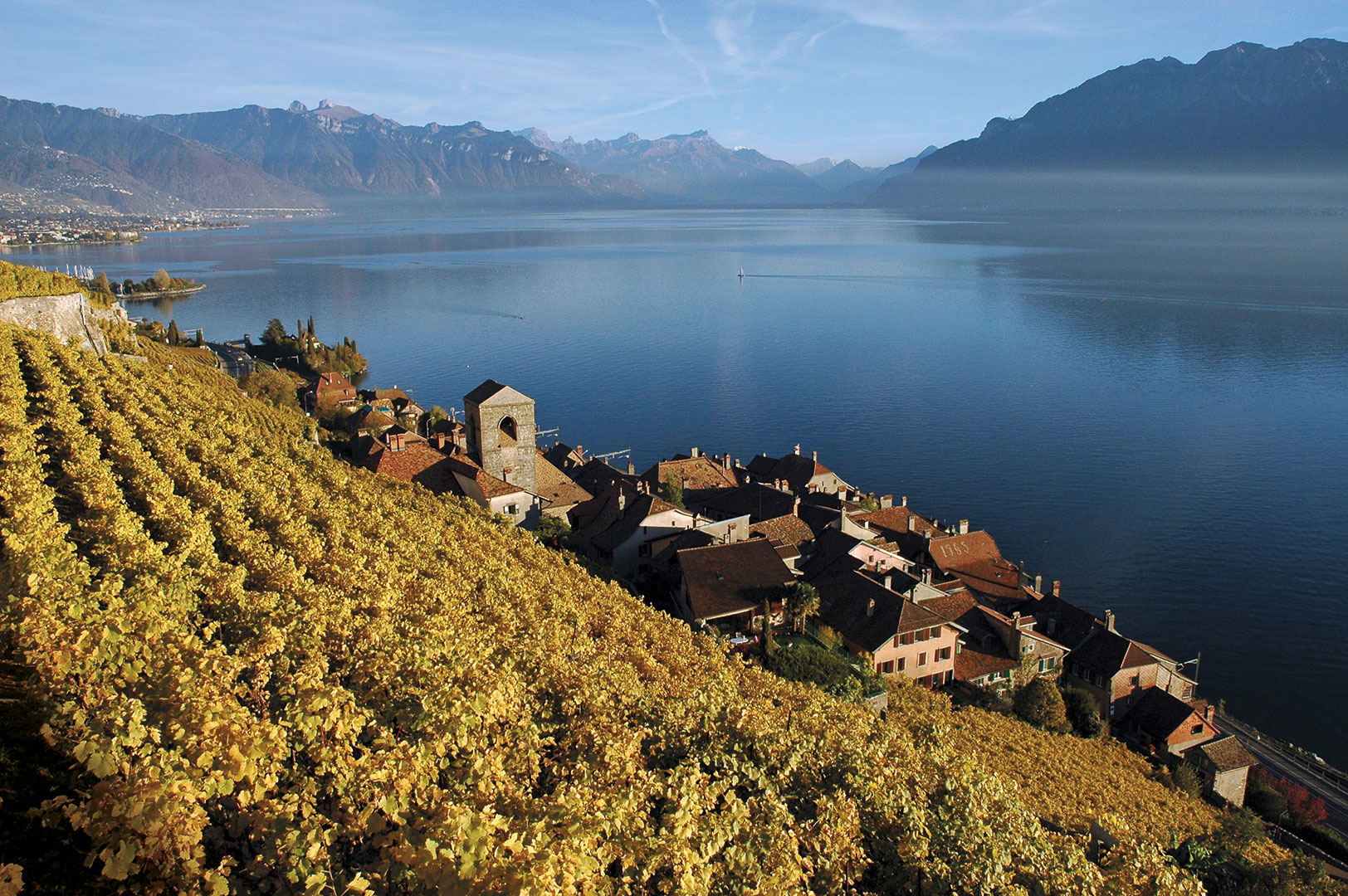 Lake Geneva and the terraced vineyards of Lavaux, near the village of Saint-Saphorin.