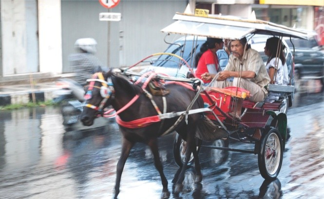Sulawesi travel: a horse-drawn bendi