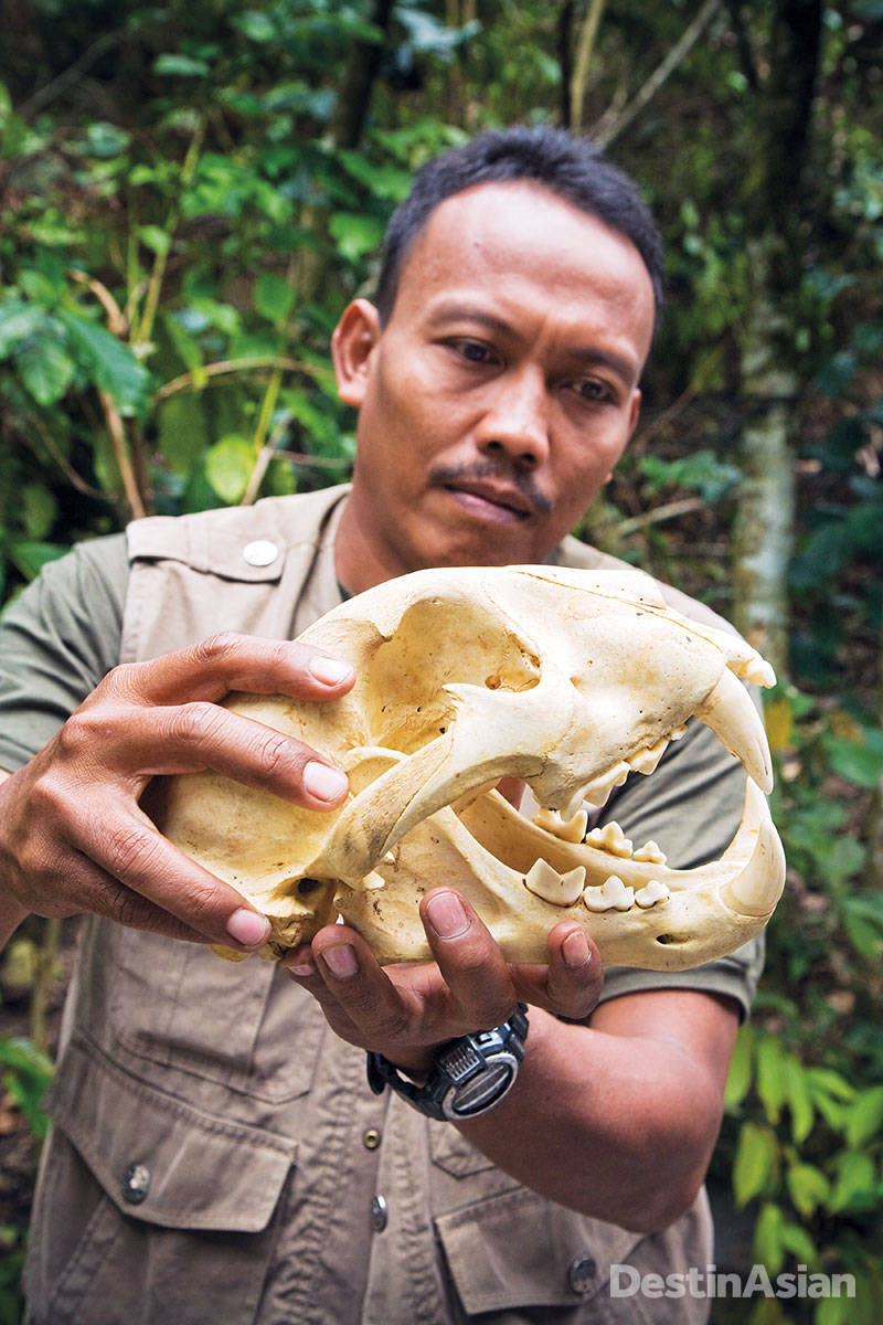 Poaching remains a threat, as this skull displayed by a park ranger attests.