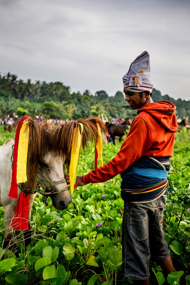Sumba is known across Indonesia for its sturdy breed of horses.