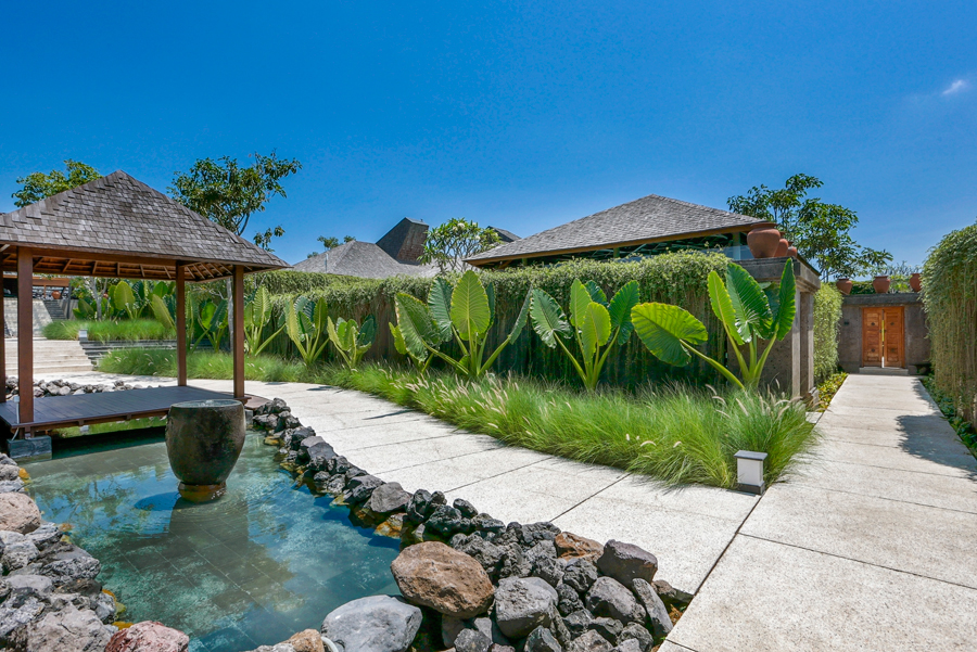 An abundance of greenery and the trickle of pond water create a calming atmosphere.