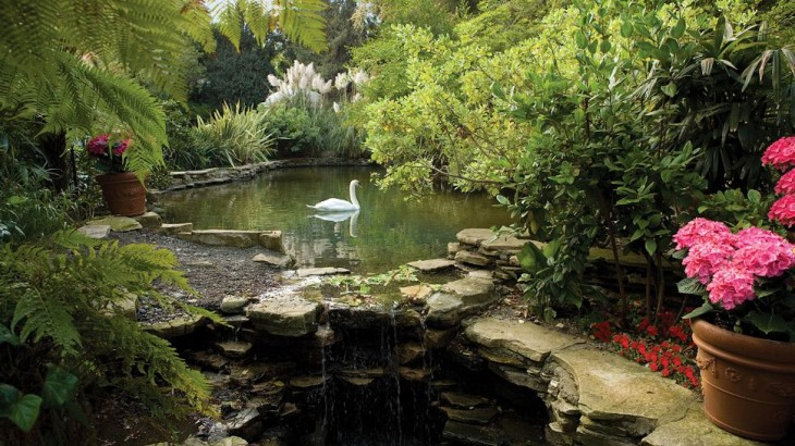 Los Angeles hotels: the Hotel Bel-Air's swan lake