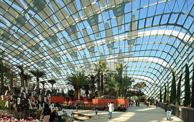 The Flower Dome harbors flora from the Mediterranean, California, South Africa, and southern Australia.