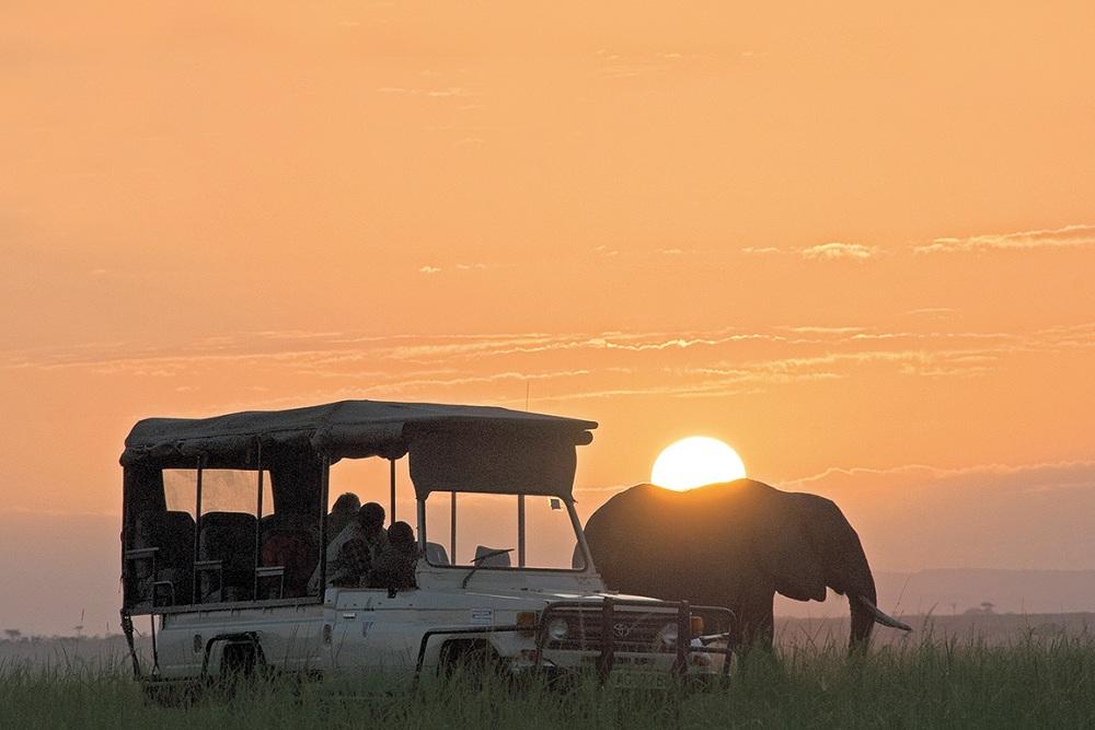 Masai Mara Sunrise Safari