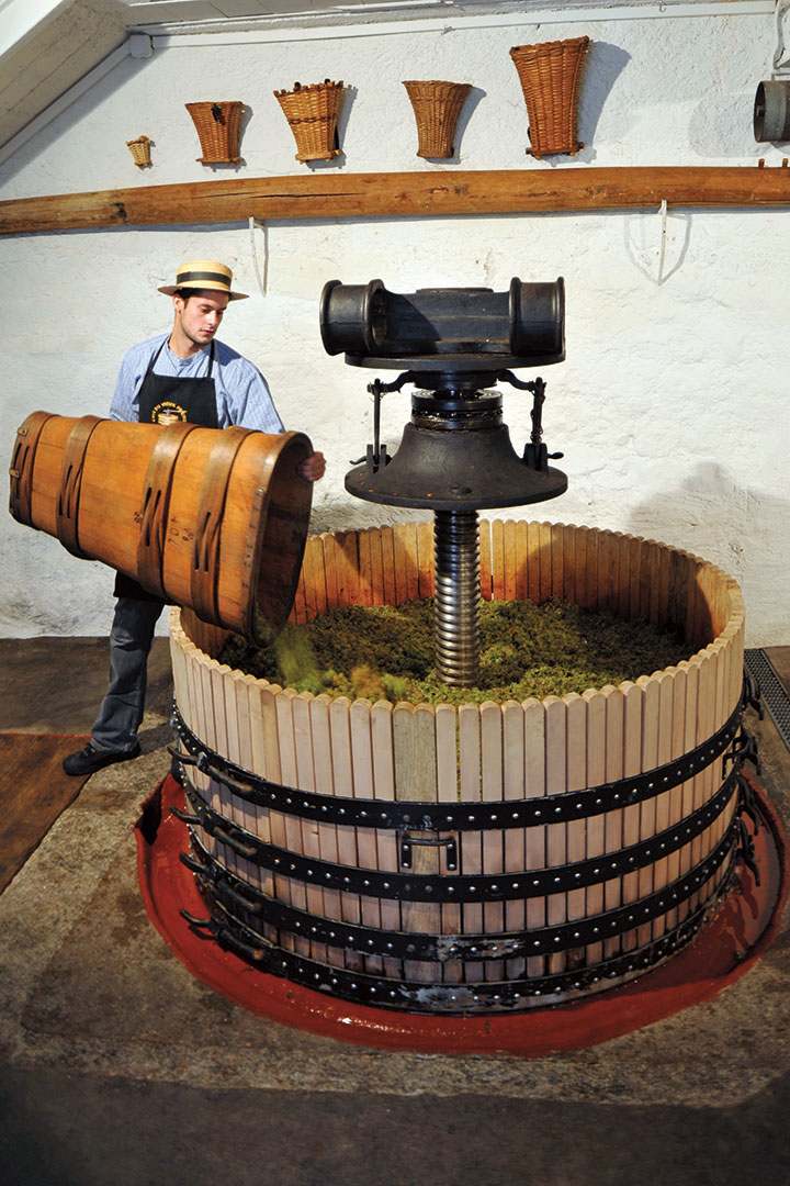 Pressing grapes the traditional way at a Lavaux winery.