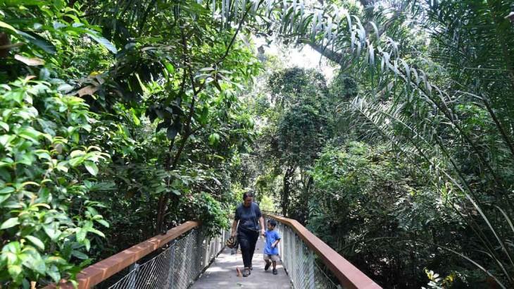Windsor-Nature-Park-(Pls-credit-NParks)-(3)