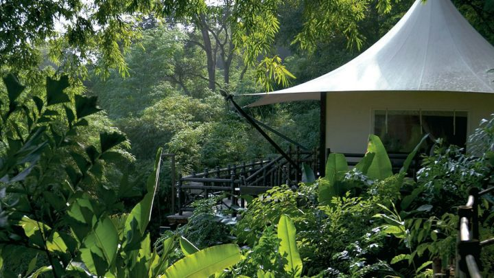 Four Seasons Tented Camp Golden Triangle .