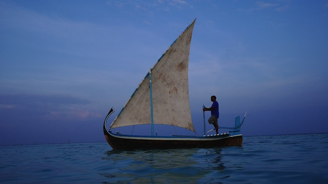 Dolphin watchers will board a 'dhoni,' the traditional Maldivian boat.