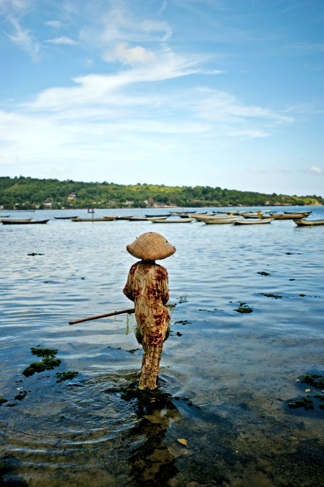 A seaweed farmer in the shallows off Nusa Ceningan.