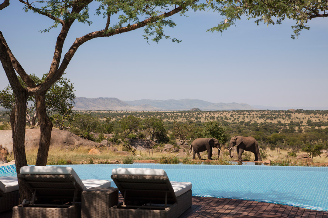Poolside at the Four Seasons Safari Lodge Serengeti.