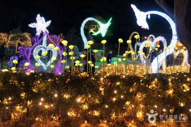 The garden decked with lights during one of its numerous events.