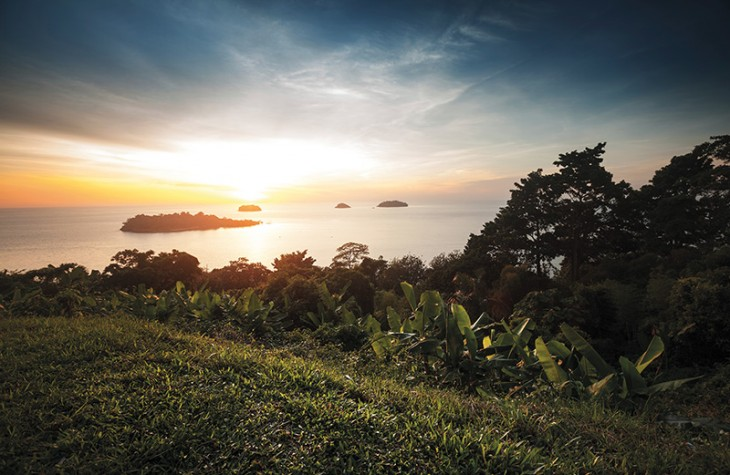 A lush swath of Koh Chang's forested interior (iStock).