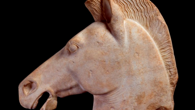 Horse Head (fragment of a statue) by Daniel  Lebée and Carine Déambrosis.