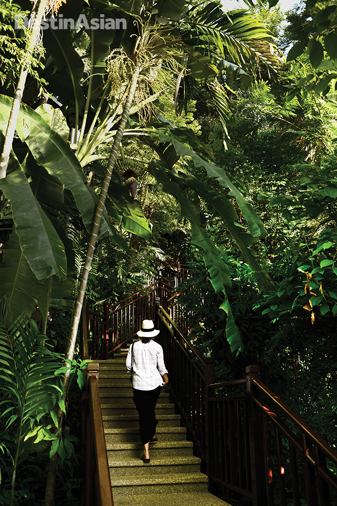 A jungle-shrouded walkway leads from the beach to the InterContinental resort.