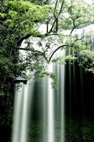 Ngardmau Waterfall, a 30-meter-high cascade on Babeldaob Island.