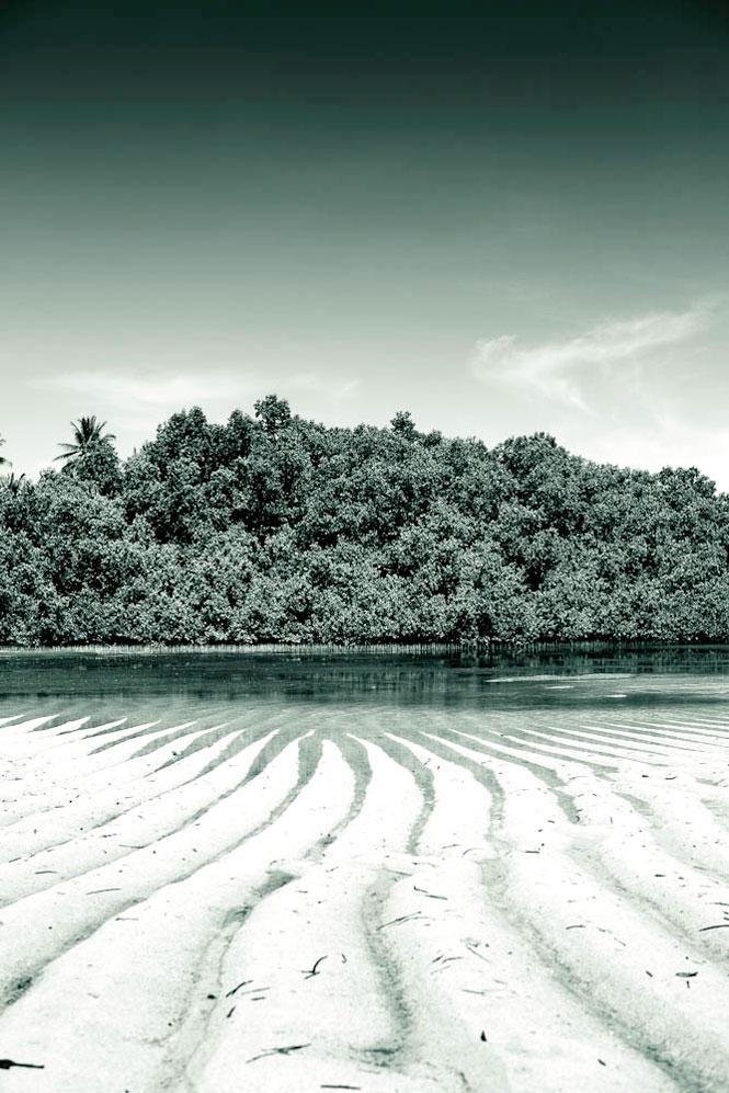 Low tide near Melekeok.