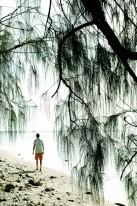 Peleliu Island's Orange Beach, where U.S. Marines landed during World War II.