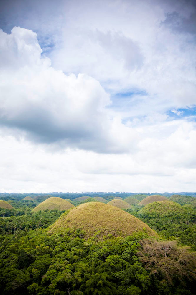 The island's famed Chocolate Hills, as seen from the observation platform near Carmen.