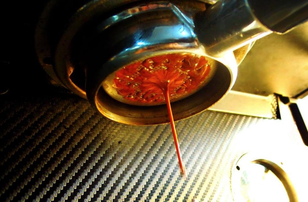 Espresso drips from a Coffee Libre press.