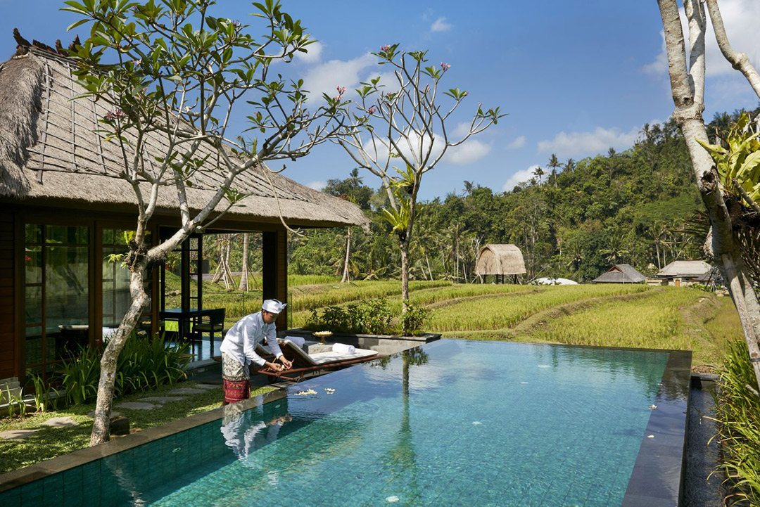 Overlooking the paddy fields from the One Bedroom Rice Terrace Pool Villa.